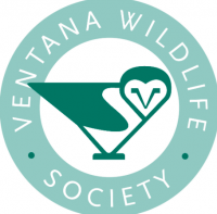 Ventana Wildlife Society's Natural Science Discovery Camp